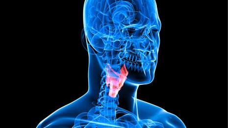 thyroid healthy diet