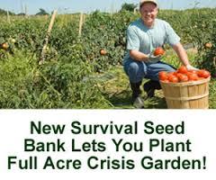 heirloom-seed-bank-an-online-store-to-buy-the-heirloom-seeds