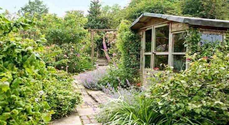 5 Benefits of Gardening in shades