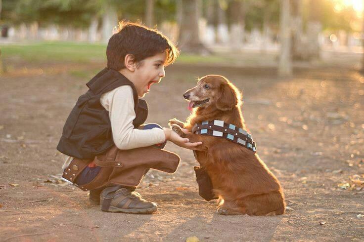 Bonding Life with Life saver Animal