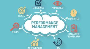Performance Management System Impact Sales