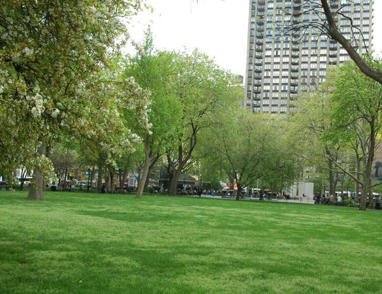 Surrounding Madison Square Park
