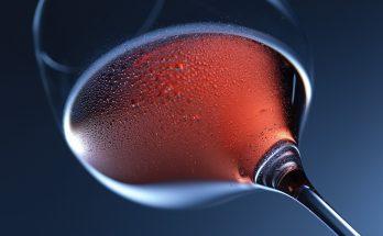 buy good wines